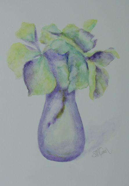 Hydrangea Flowers 1