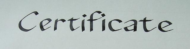 Calligraphy Services Shona Mcqueen