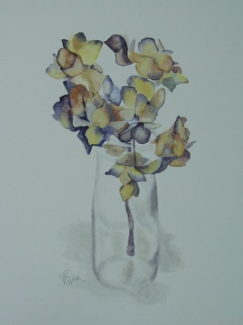 Winter Hydrangea 1