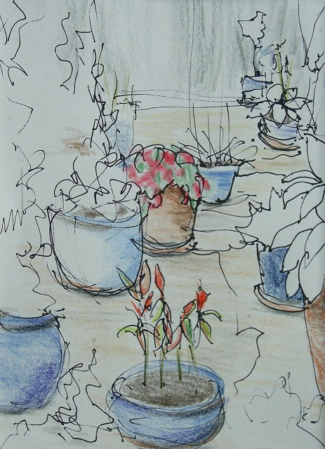 Sketch for Pots on the Patio