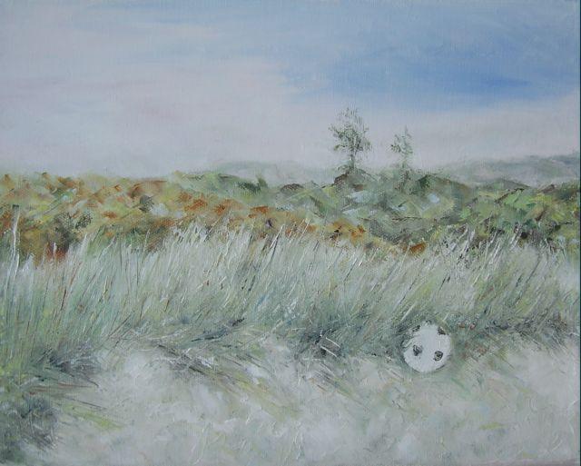 Sandyhills Grasses