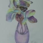 Hydrangea Flowers 2