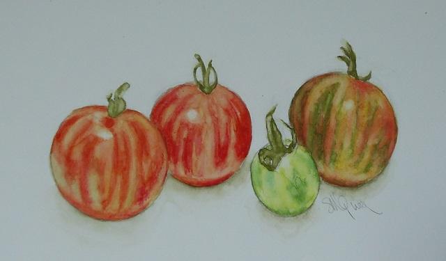 Tigerella Tomatoes
